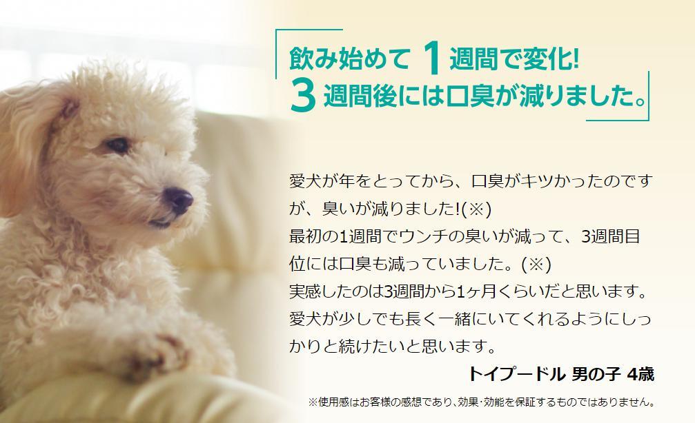 キュアペット(CUREPET) 口コミ・評価・評判